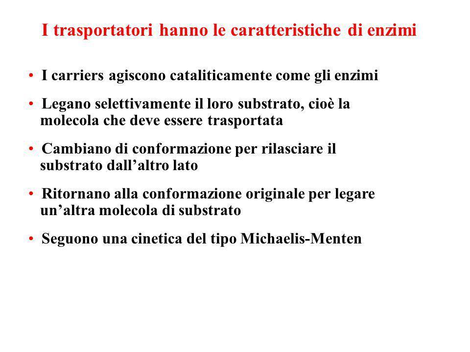 Caratteristiche dei trasporti mediati I carriers sono dotati di specificità Sono soggetti a saturazione Possono essere bloccati dagli inibitori compet