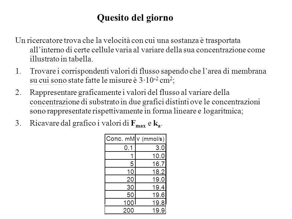050100150200 0 5 10 15 20 Flusso netto [moli/(cm 2 s] C (mM) 0 102030 0 5 10 15 20 Flusso netto [moli/(cm 2 s] C (mM) k a1 k a2 k a3 Calcolo della cos