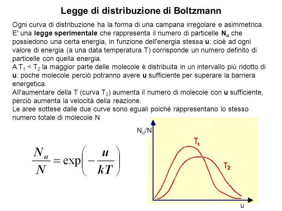 Equazione di Nernst Permette di calcolate il potenziale di equilibrio di una specie ionica note le sue concentrazioni allequilibrio a cavallo della me