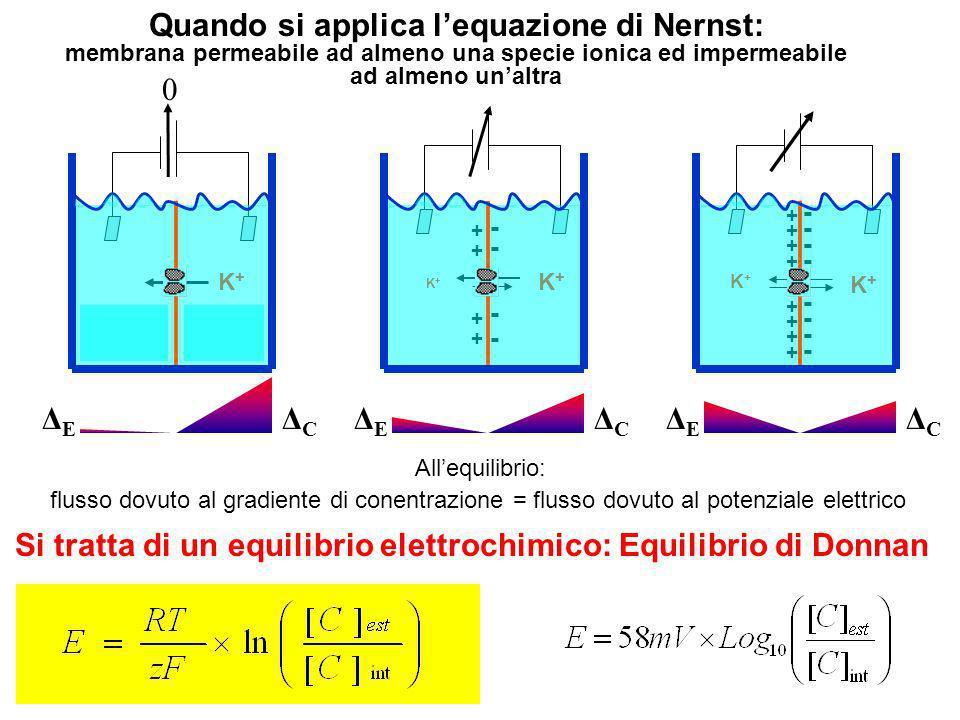 Nel caso di particelle elettricamente cariche, se U 2 -U 1 è la differenza di potenziale elettrochimico molare di uno ione permeante, dovuta alla diff