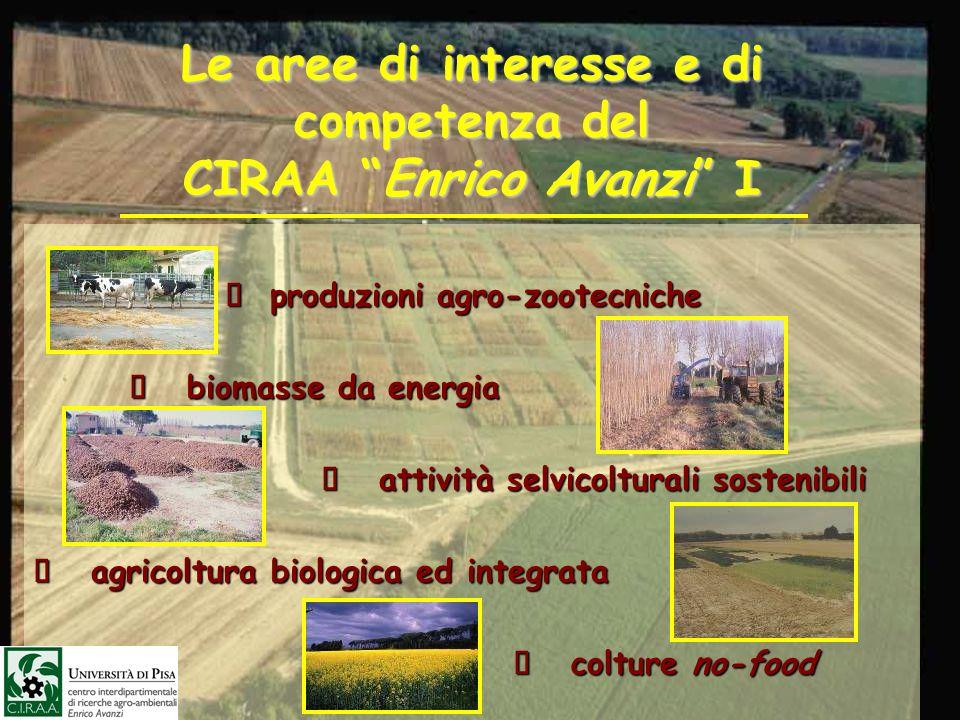 Le aree di interesse e di competenza del CIRAA Enrico Avanzi I produzioni agro-zootecniche produzioni agro-zootecniche biomasse da energia biomasse da