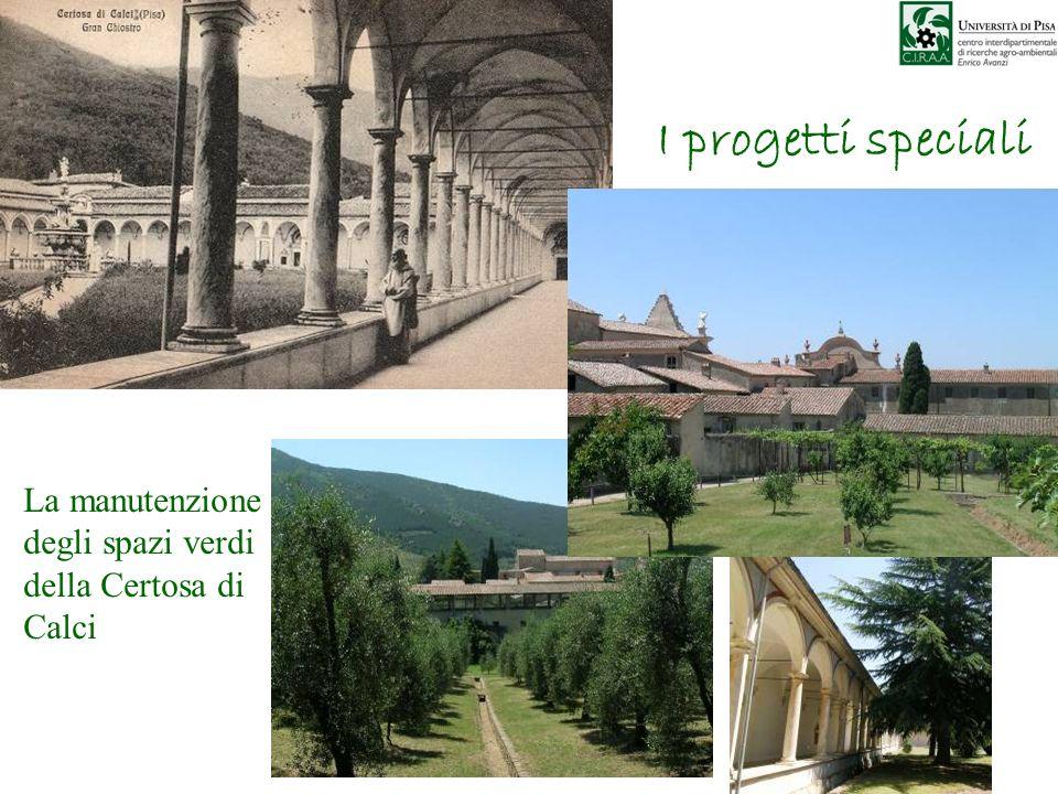 I progetti speciali La manutenzione degli spazi verdi della Certosa di Calci