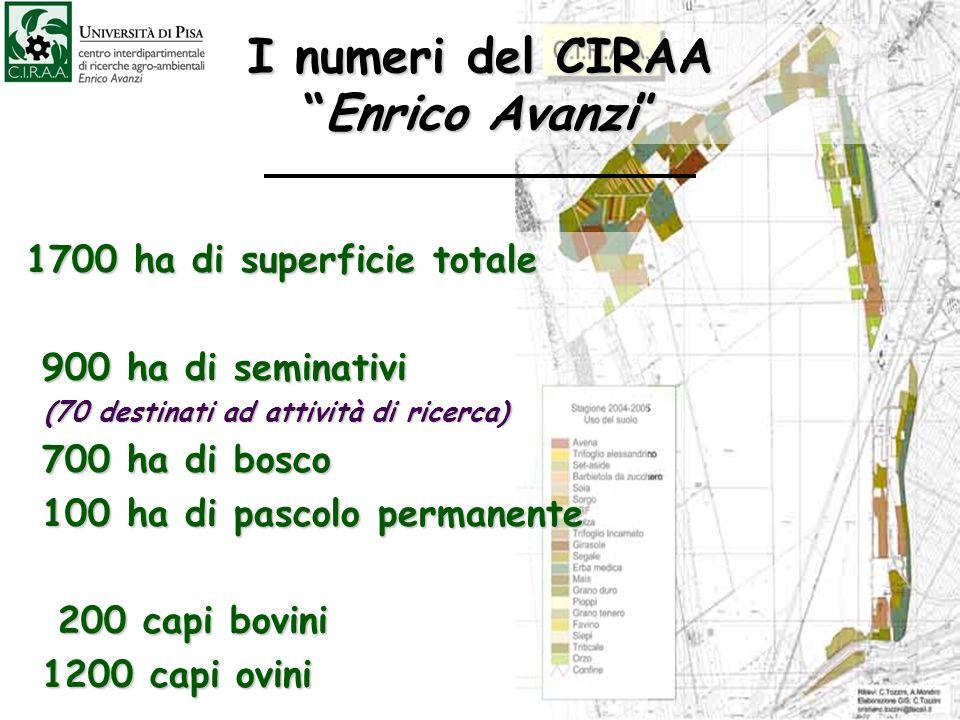 I numeri del CIRAAEnrico Avanzi 1700 ha di superficie totale 1700 ha di superficie totale 900 ha di seminativi 900 ha di seminativi (70 destinati ad a