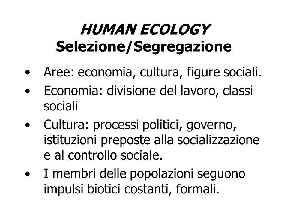 HUMAN ECOLOGY Selezione/Segregazione Aree: economia, cultura, figure sociali. Economia: divisione del lavoro, classi sociali Cultura: processi politic