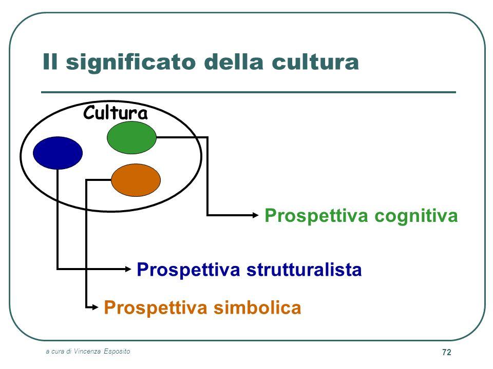a cura di Vincenza Esposito 72 Il significato della cultura Prospettiva cognitiva Prospettiva strutturalista Prospettiva simbolica Cultura