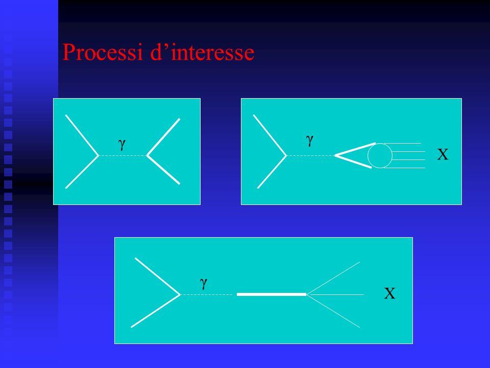Processi dinteresse γ γ X γ X