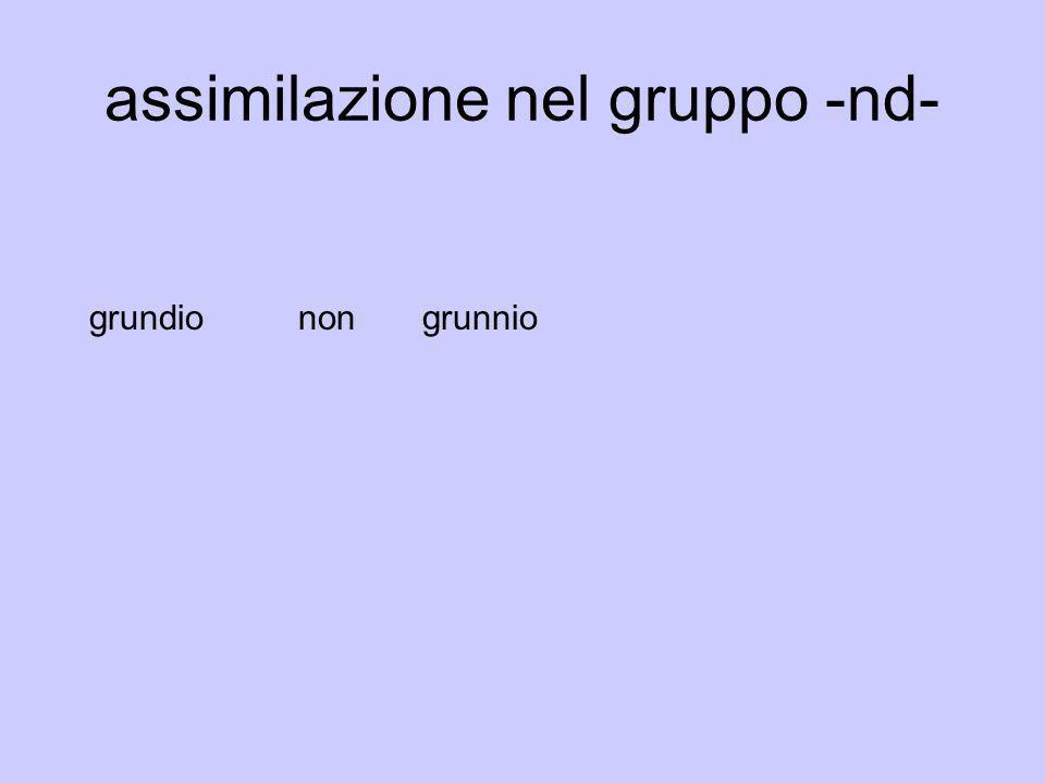 assimilazione nel gruppo -nd- grundionon grunnio