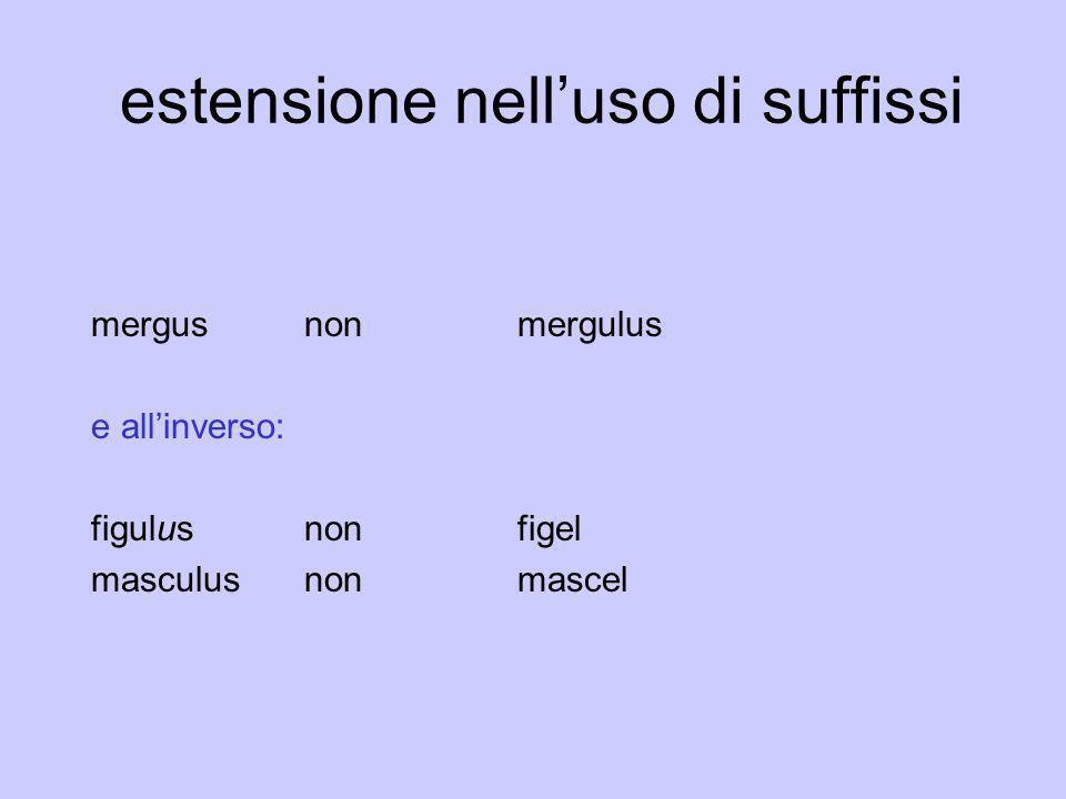 estensione nelluso di suffissi mergusnonmergulus e allinverso: figulus nonfigel masculus nonmascel