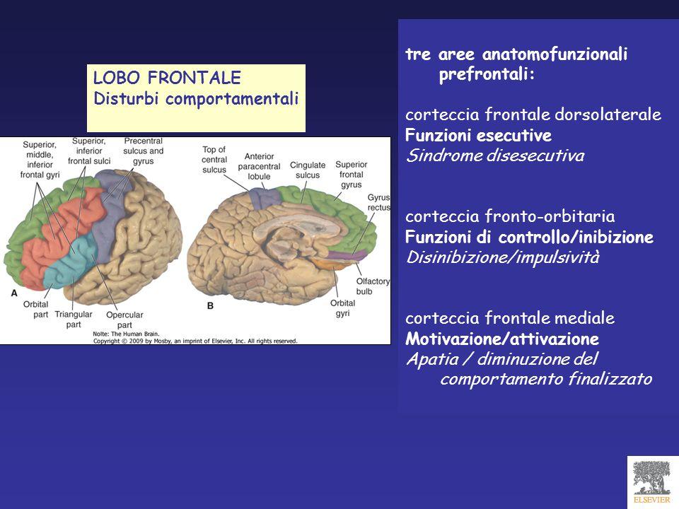 tre aree anatomofunzionali prefrontali: corteccia frontale dorsolaterale Funzioni esecutive Sindrome disesecutiva corteccia fronto-orbitaria Funzioni
