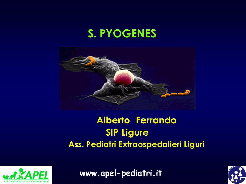 www.apel-pediatri.it S. PYOGENES Alberto Ferrando SIP Ligure Ass. Pediatri Extraospedalieri Liguri