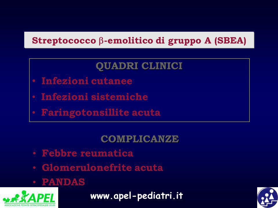 www.apel-pediatri.it Streptococco -emolitico di gruppo A (SBEA) QUADRI CLINICI Infezioni cutanee Infezioni sistemiche Faringotonsillite acuta COMPLICA
