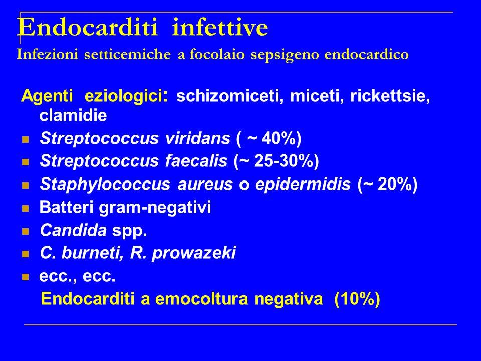 Endocarditi infettive Infezioni setticemiche a focolaio sepsigeno endocardico Agenti eziologici : schizomiceti, miceti, rickettsie, clamidie Streptoco