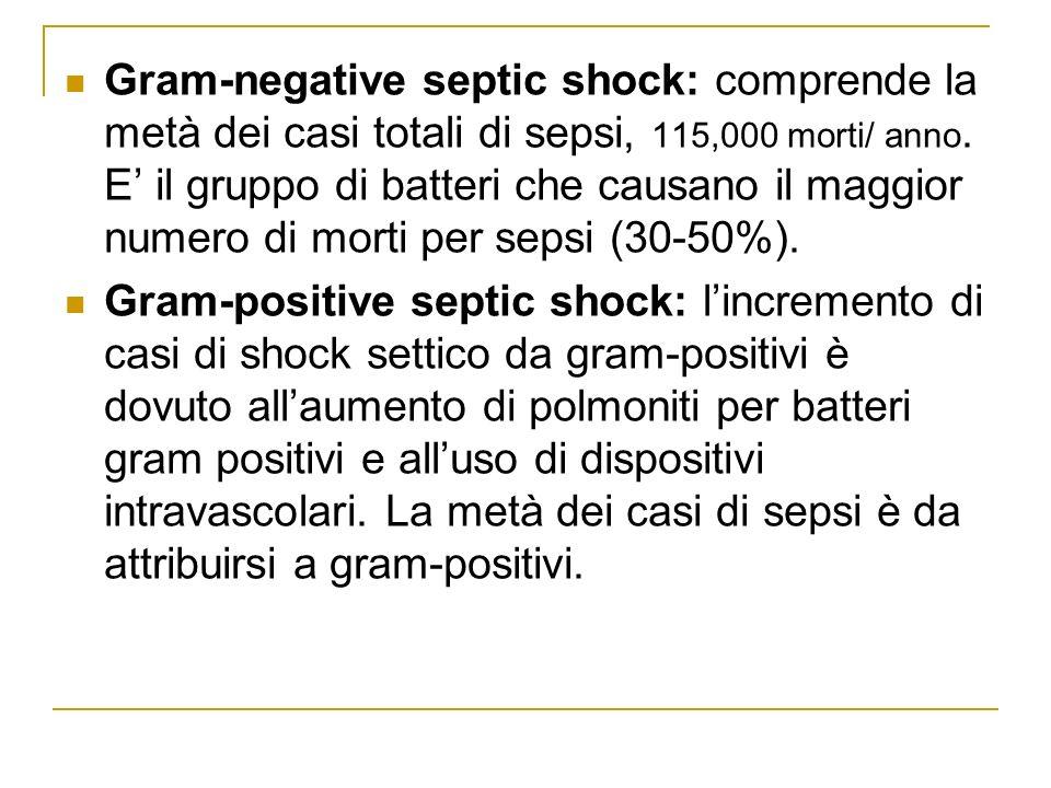 Gram-negative septic shock: comprende la metà dei casi totali di sepsi, 115,000 morti/ anno. E il gruppo di batteri che causano il maggior numero di m