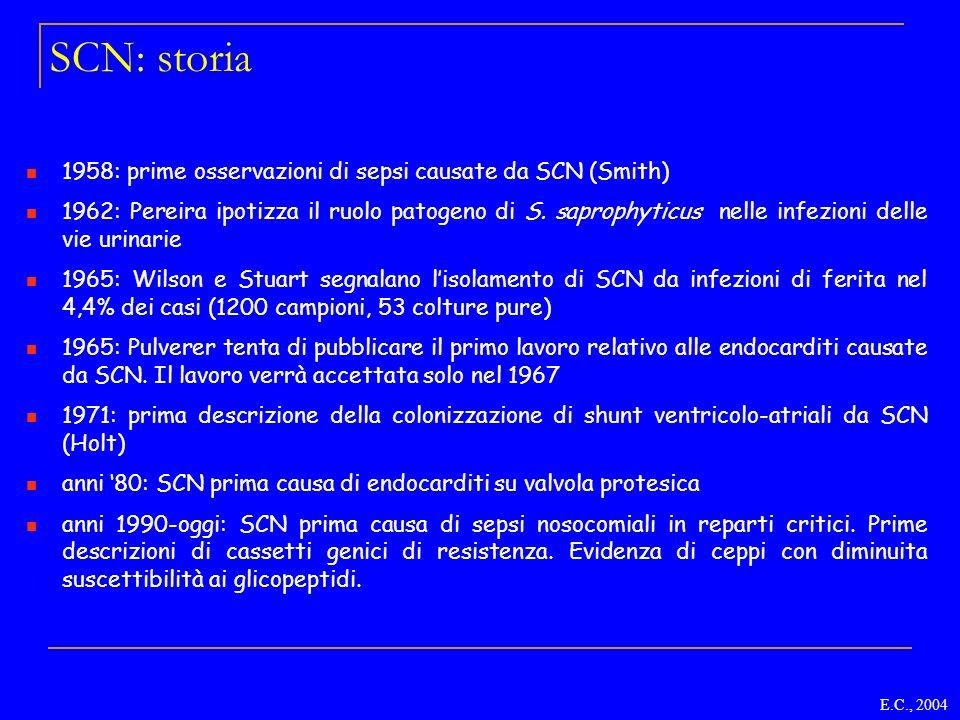 SCN: storia 1958: prime osservazioni di sepsi causate da SCN (Smith) 1962: Pereira ipotizza il ruolo patogeno di S. saprophyticus nelle infezioni dell