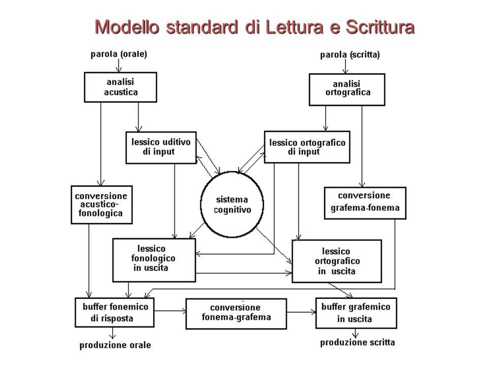 Modello standard di Lettura e Scrittura