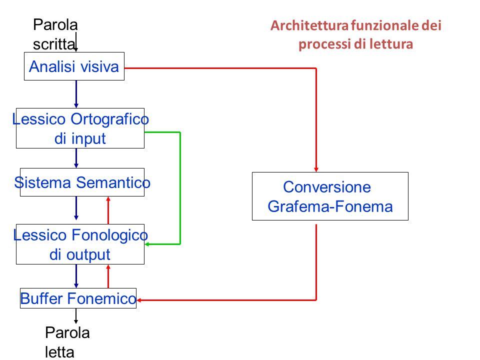 Conversione Grafema-Fonema Analisi visiva Architettura funzionale dei processi di lettura Parola scritta Lessico Ortografico di input Sistema Semantico Lessico Fonologico di output Buffer Fonemico Parola letta