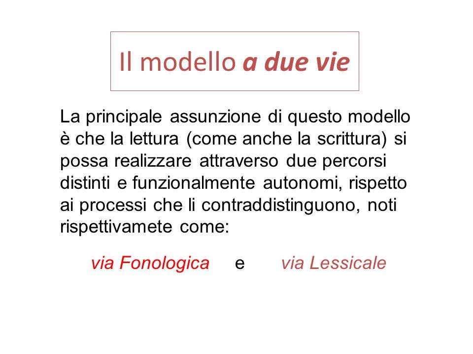 Il modello a due vie La principale assunzione di questo modello è che la lettura (come anche la scrittura) si possa realizzare attraverso due percorsi