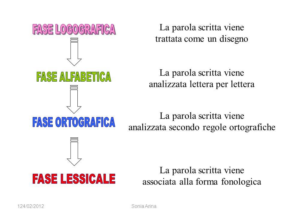 La parola scritta viene trattata come un disegno La parola scritta viene analizzata lettera per lettera La parola scritta viene analizzata secondo regole ortografiche La parola scritta viene associata alla forma fonologica 124/02/2012Sonia Arina