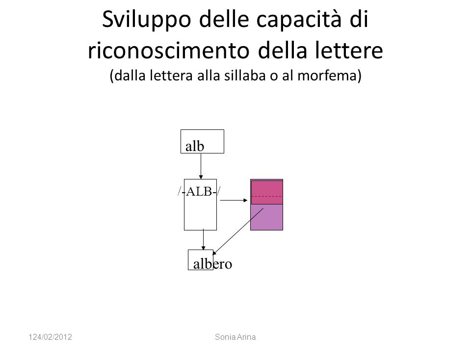 Sviluppo delle capacità di riconoscimento della lettere (dalla lettera alla sillaba o al morfema) alb /-ALB-/ albero 124/02/2012Sonia Arina