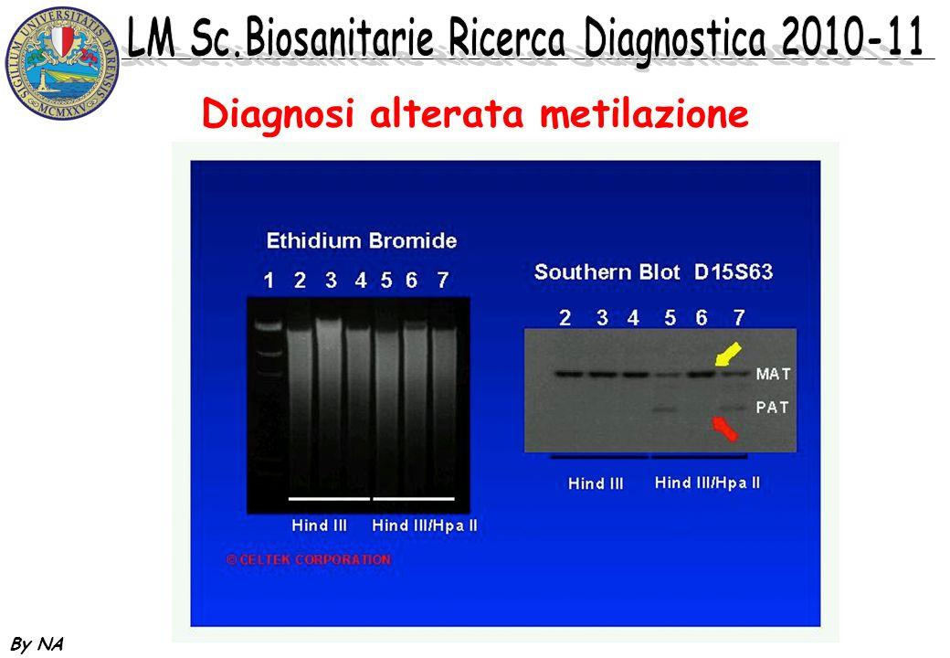 By NA Diagnosi alterata metilazione www.compgene.com/pws.htm