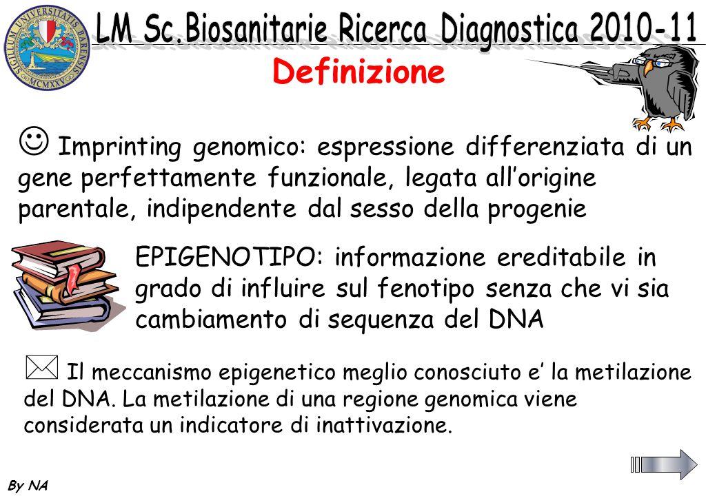 By NA 2 Non e un cambiamento permanente del DNA 2 Deve essere abolito prima di trasmettere il genoma 2 Deve essere ripristinato coerentemente al sesso dellindividuo che trasmette 2 Su questa nuova etichettatura agiscono i meccanismi di regolazione genica secondo i pattern previsti per cellule, tessuti.....