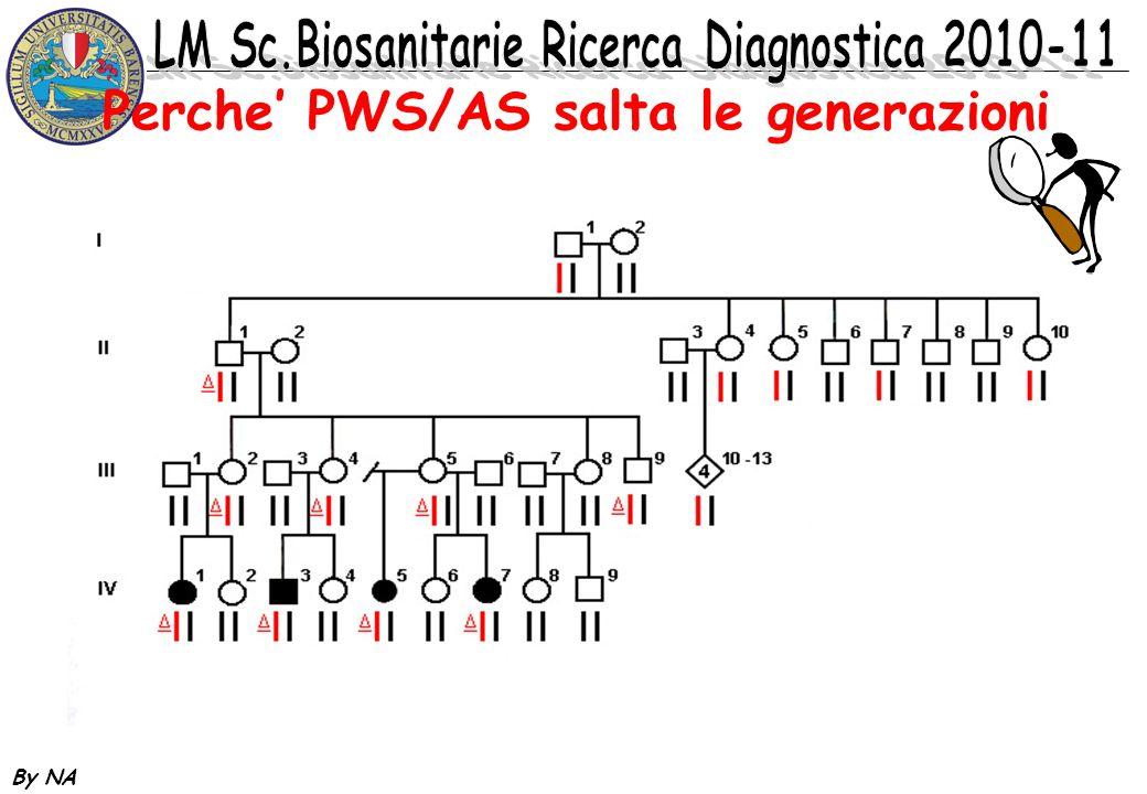 By NA Alterazioni della regione PWS La delezione classica riguarda quella che viene definita Prader-Willi critical region (PWCR).