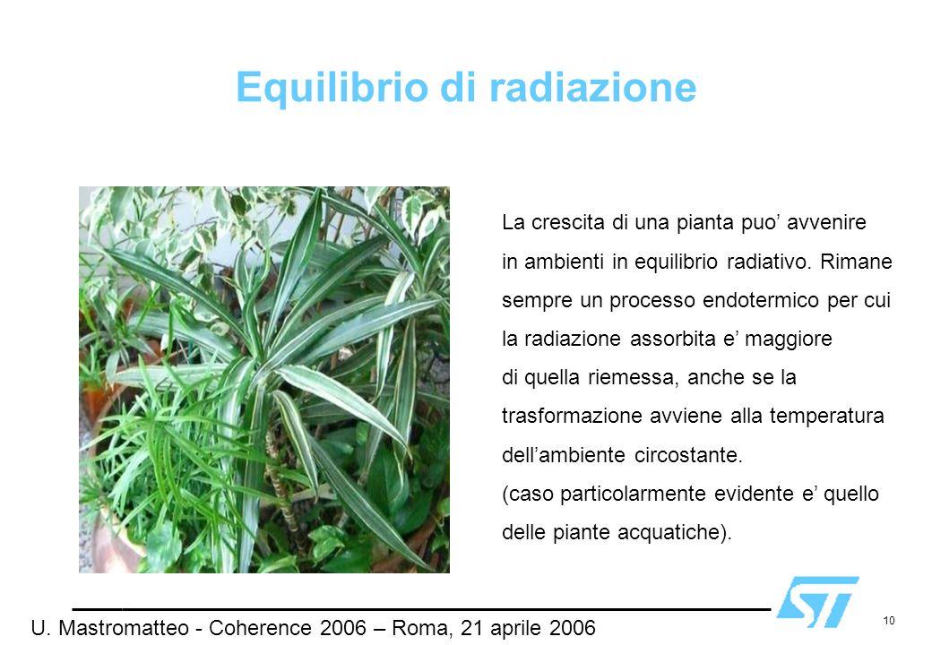 10 Equilibrio di radiazione La crescita di una pianta puo avvenire in ambienti in equilibrio radiativo. Rimane sempre un processo endotermico per cui