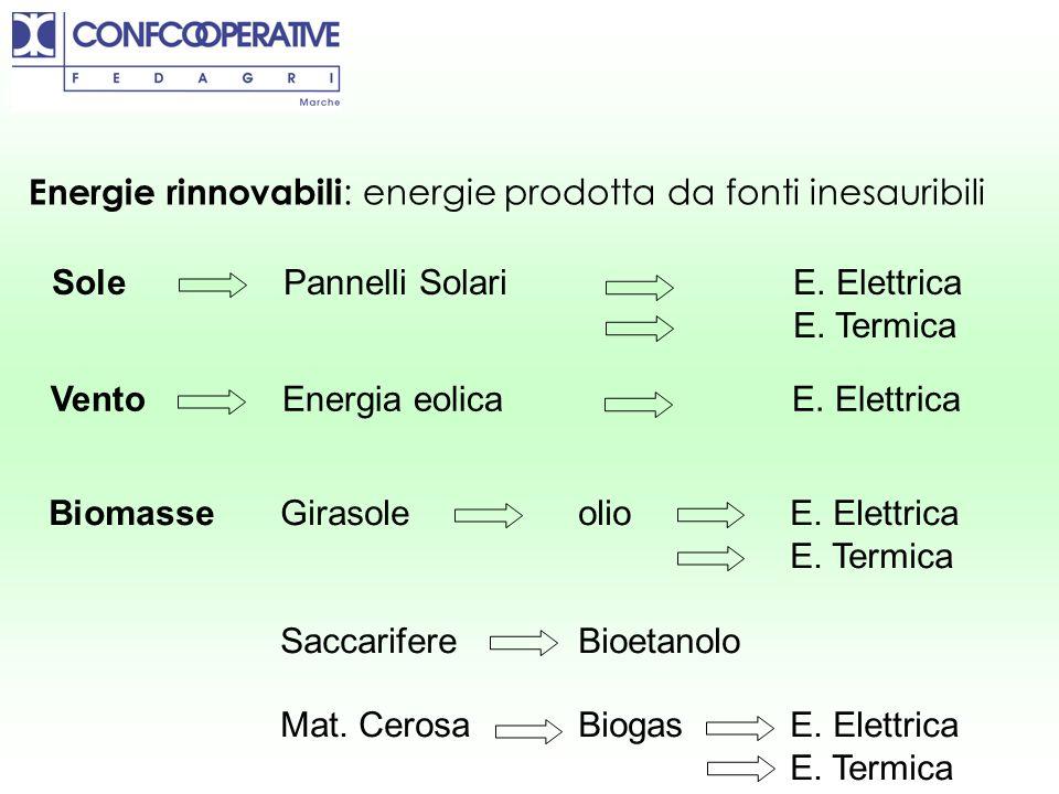 Energie rinnovabili : energie prodotta da fonti inesauribili Vento Energia eolicaE. Elettrica Biomasse GirasoleolioE. Elettrica E. Termica Saccarifere