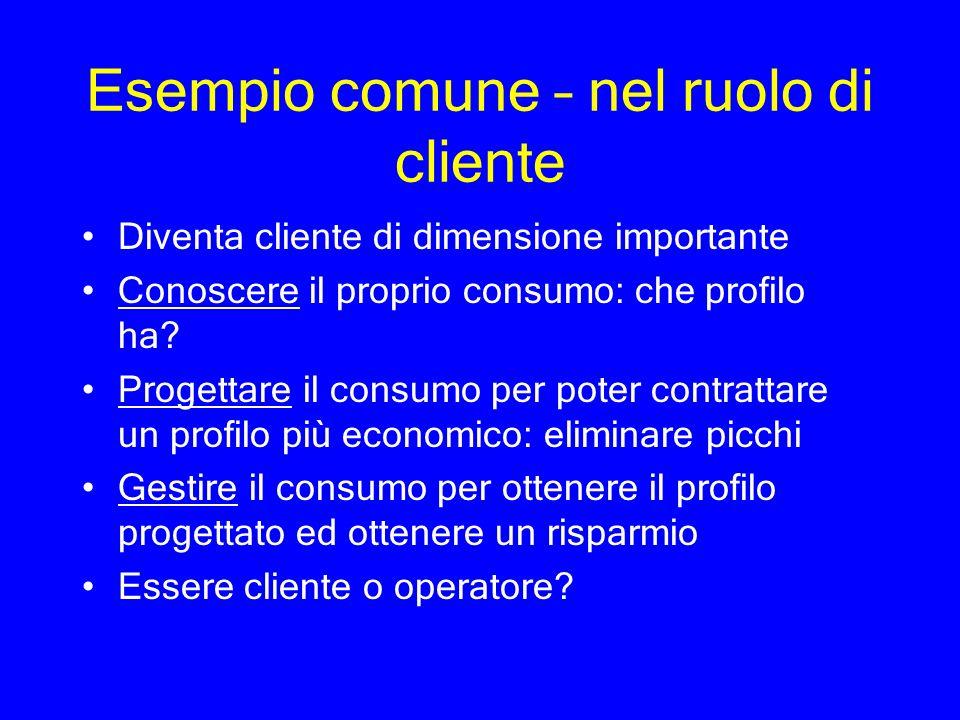 Esempio comune – nel ruolo di cliente Diventa cliente di dimensione importante Conoscere il proprio consumo: che profilo ha? Progettare il consumo per
