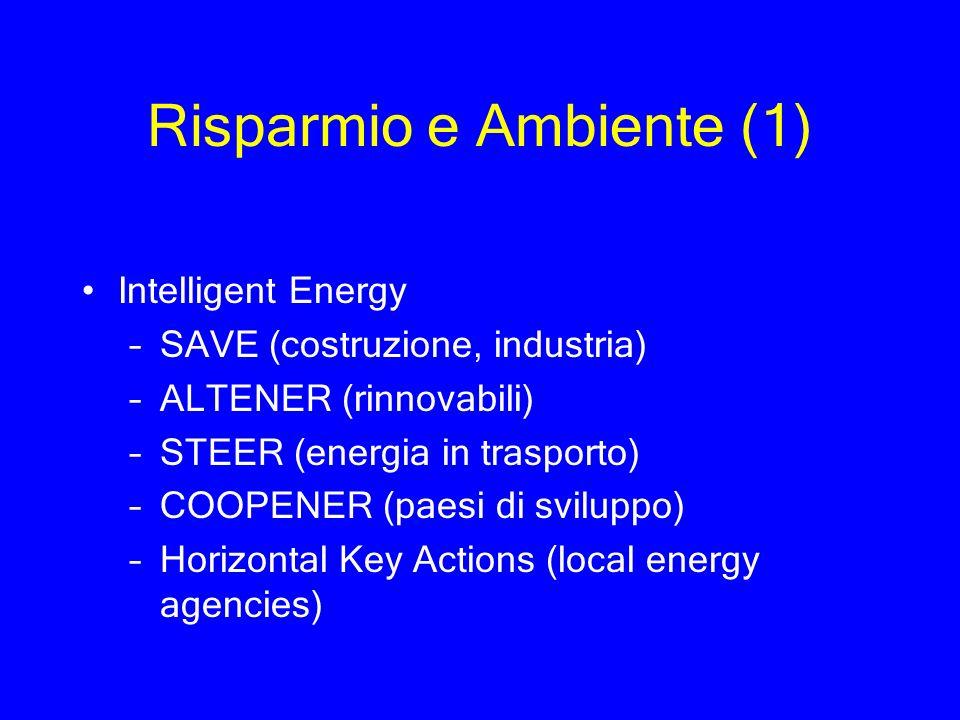 Risparmio e Ambiente (1) Intelligent Energy –SAVE (costruzione, industria) –ALTENER (rinnovabili) –STEER (energia in trasporto) –COOPENER (paesi di sv