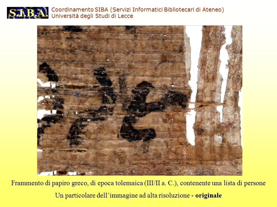 Frammento di papiro greco, di epoca tolemaica (III/II a.