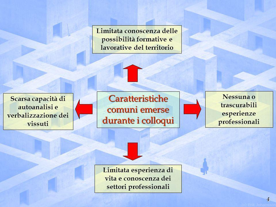 4 Caratteristiche comuni emerse durante i colloqui Limitata esperienza di vita e conoscenza dei settori professionali Limitata conoscenza delle possib