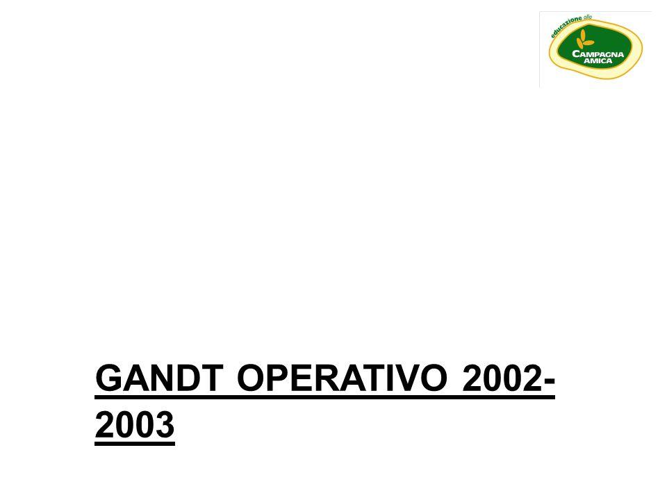 GANDT OPERATIVO 2002- 2003