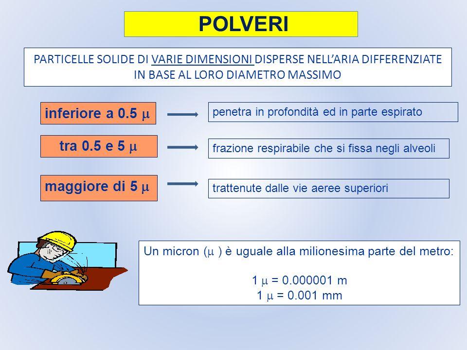 PARTICELLE SOLIDE DI VARIE DIMENSIONI DISPERSE NELLARIA DIFFERENZIATE IN BASE AL LORO DIAMETRO MASSIMO maggiore di 5 penetra in profondità ed in parte