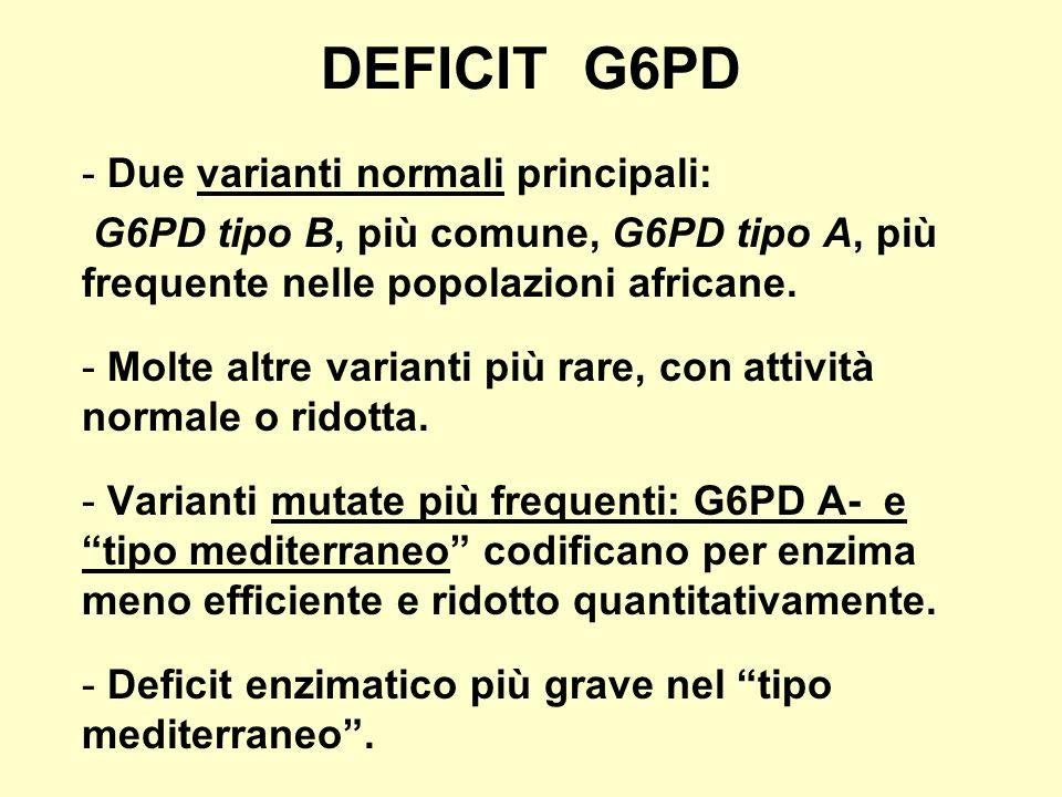DEFICIT G6PD - Due varianti normali principali: G6PD tipo B, più comune, G6PD tipo A, più frequente nelle popolazioni africane. - Molte altre varianti