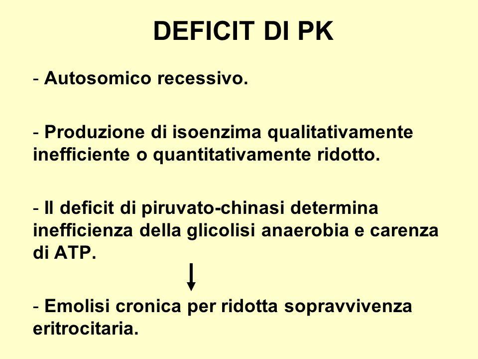 DEFICIT DI PK - Autosomico recessivo. - Produzione di isoenzima qualitativamente inefficiente o quantitativamente ridotto. - Il deficit di piruvato-ch