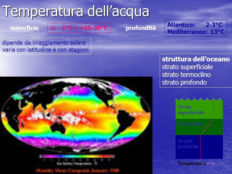 Temperatura dellacqua dipende da irraggiamento solare varia con latitudine e con stagioni da 1°C a +25-30°C superficieprofondità Atlantico: 2-3°C Medi
