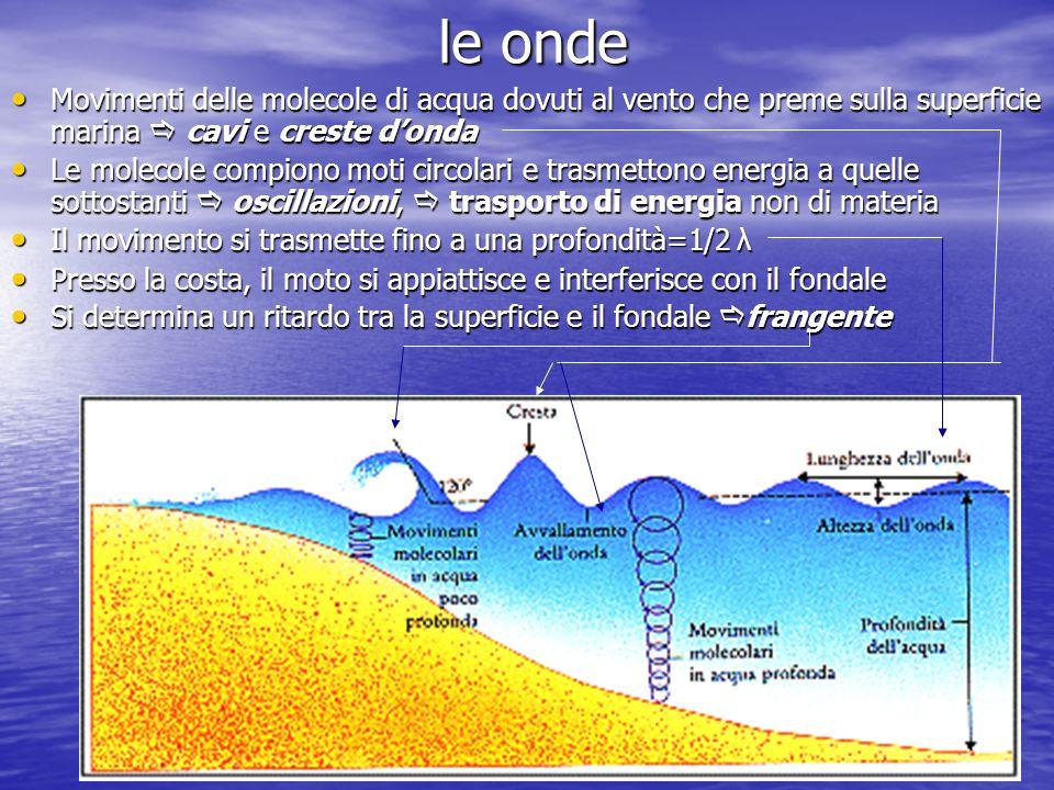 le onde Movimenti delle molecole di acqua dovuti al vento che preme sulla superficie marina cavi e creste donda Movimenti delle molecole di acqua dovu