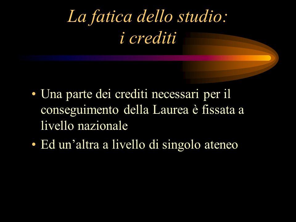 La fatica dello studio: i crediti Una parte dei crediti necessari per il conseguimento della Laurea è fissata a livello nazionale Ed unaltra a livello di singolo ateneo