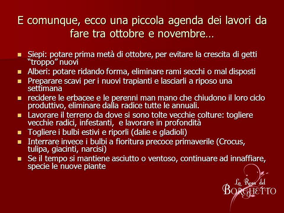 E comunque, ecco una piccola agenda dei lavori da fare tra ottobre e novembre… Siepi: potare prima metà di ottobre, per evitare la crescita di getti t