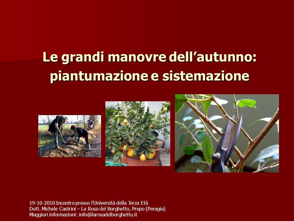 Le grandi manovre dellautunno: piantumazione e sistemazione 19-10-2010 Incontro presso lUniversità della Terza Età Dott. Michele Castrini – La Rosa de