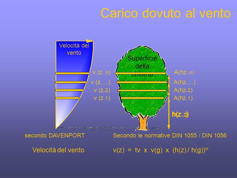 Superficie della chioma Carico dovuto al vento secondo DAVENPORT Velocità del vento v (z..
