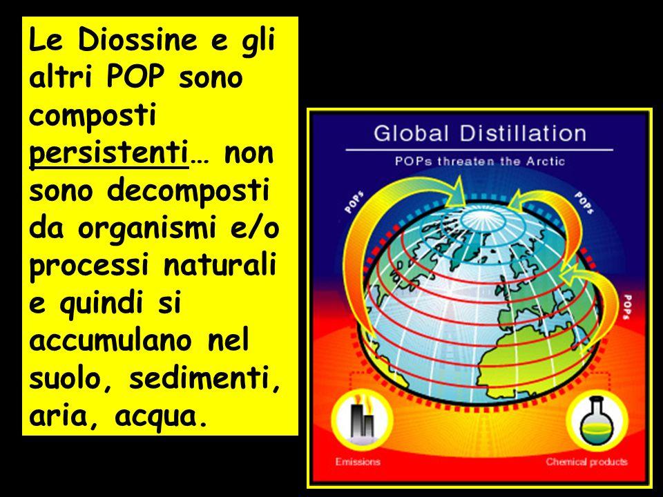 Le Diossine e gli altri POP sono composti persistenti… non sono decomposti da organismi e/o processi naturali e quindi si accumulano nel suolo, sedime