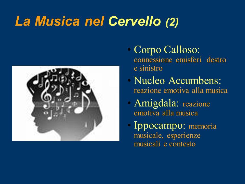 Musica/Emozioni/Musica La musica stimola le aree profonde del cervello limbico (sistema emotivo) che, interconnesso con tutte le altre aree cerebrali corticali e sottocorticali (memoria, pensiero, sistema neurovegetativo, senso-motorio, etc..) determina la complessità, l originalità e la modulazione delle risposte.