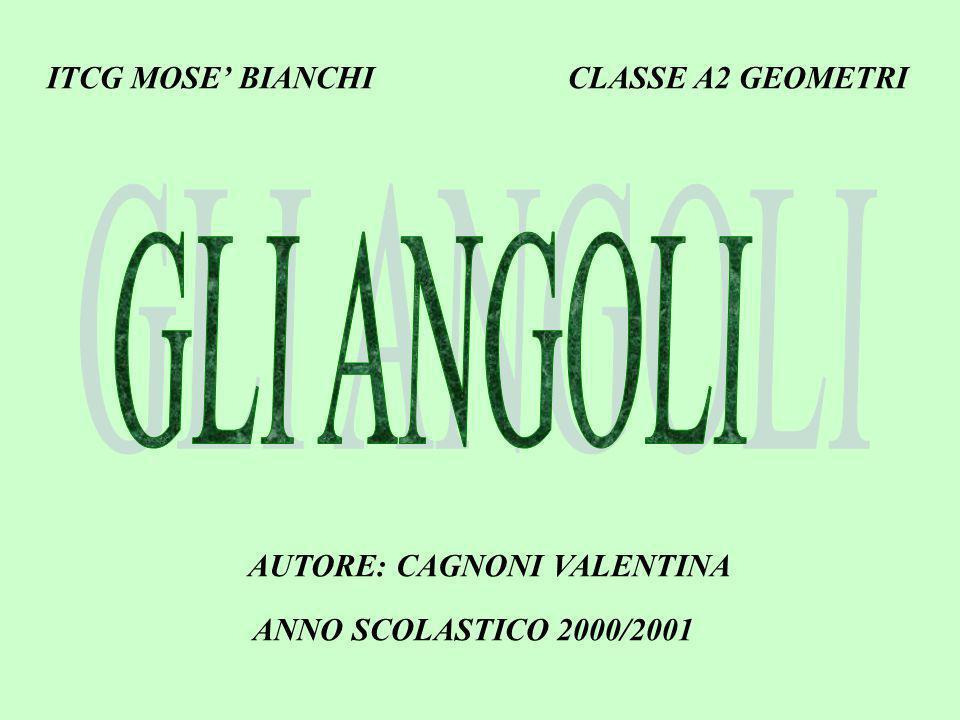 ITCG MOSE BIANCHI CLASSE A2 GEOMETRI AUTORE: CAGNONI VALENTINA ANNO SCOLASTICO 2000/2001