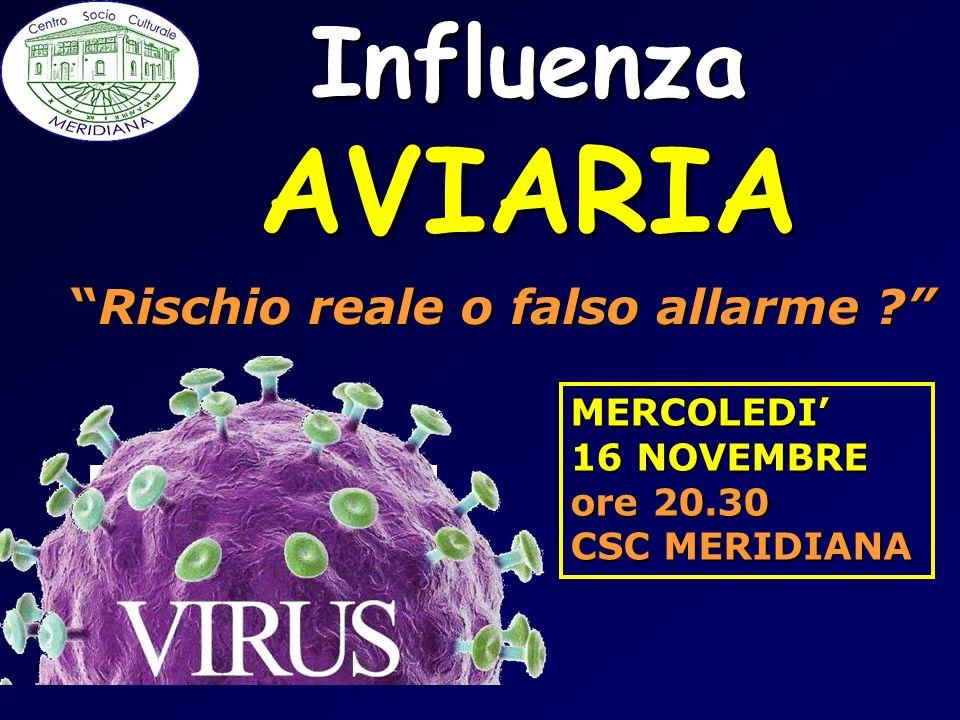 InfluenzaAVIARIA Rischio reale o falso allarme ?Rischio reale o falso allarme ? MERCOLEDI 16 NOVEMBRE ore 20.30 CSC MERIDIANA
