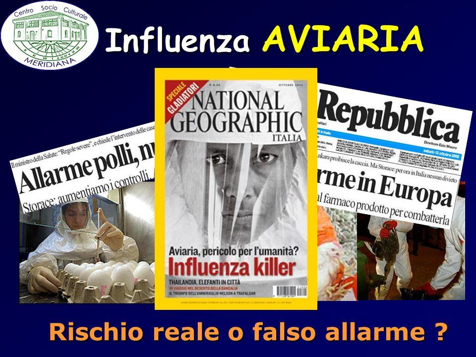 Influenza AVIARIA Rischio reale o falso allarme ?