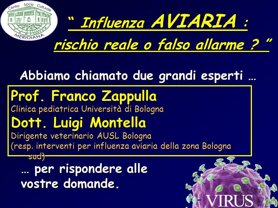 … per rispondere alle vostre domande. Prof. Franco Zappulla Clinica pediatrica Università di Bologna Dott. Luigi Montella Dirigente veterinario AUSL B