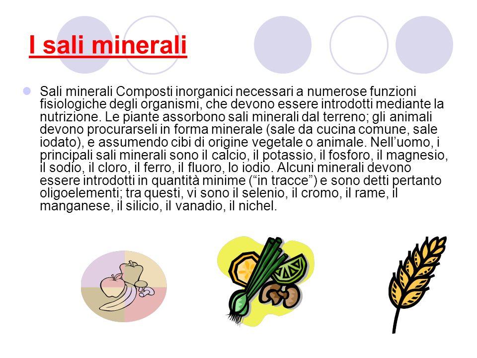 I sali minerali Sali minerali Composti inorganici necessari a numerose funzioni fisiologiche degli organismi, che devono essere introdotti mediante la