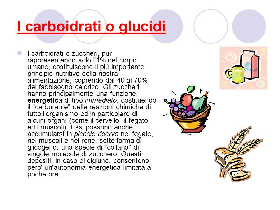 I carboidrati o glucidi I carboidrati o zuccheri, pur rappresentando solo l'1% del corpo umano, costituiscono il più importante principio nutritivo de